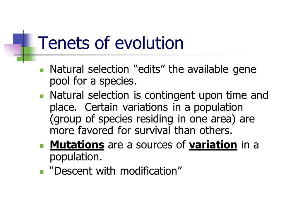 Tenets of evolution Natural selection edits the available gene pool for a species.