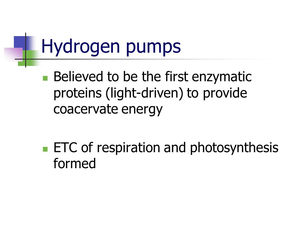 Hydrogen pumps Believed to be the first enzymatic proteins (light-driven) to provide coacervate energy.