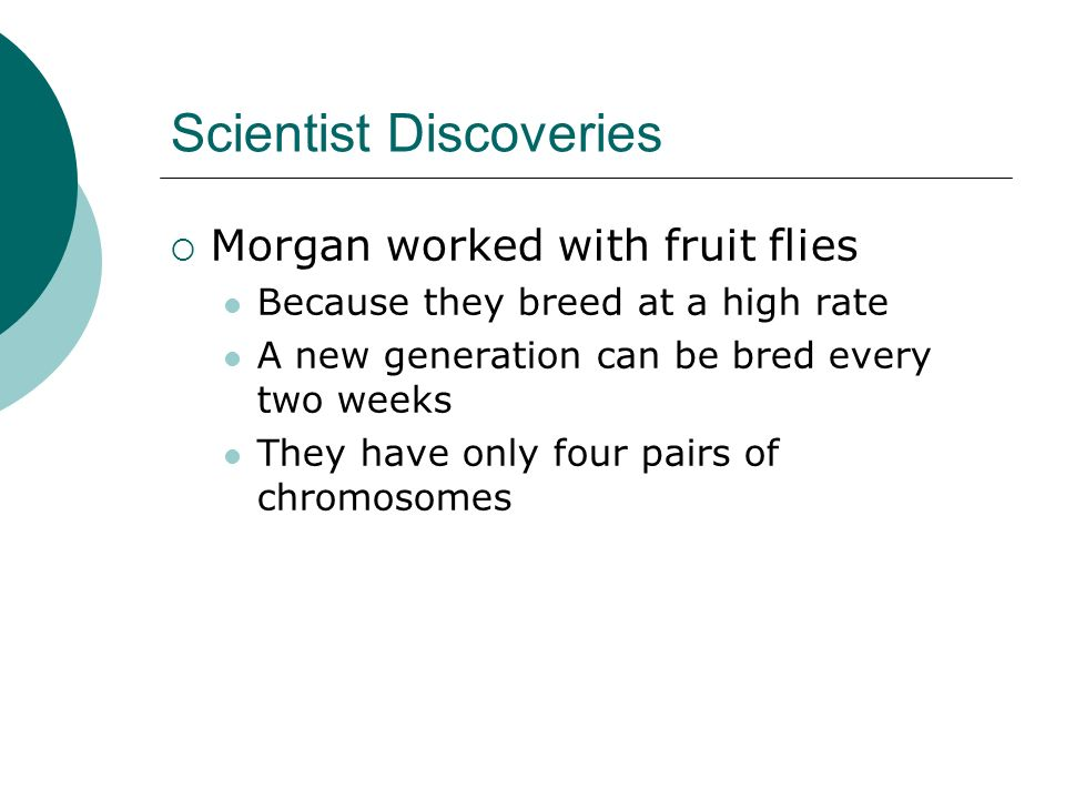 Scientist Discoveries