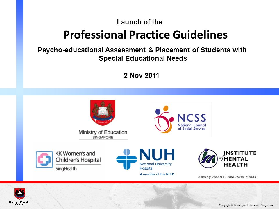 Professional Practice Guidelines