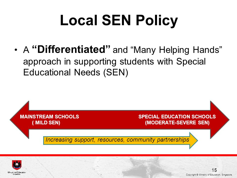 Local SEN Policy A Differentiated and Many Helping Hands approach in supporting students with Special Educational Needs (SEN)