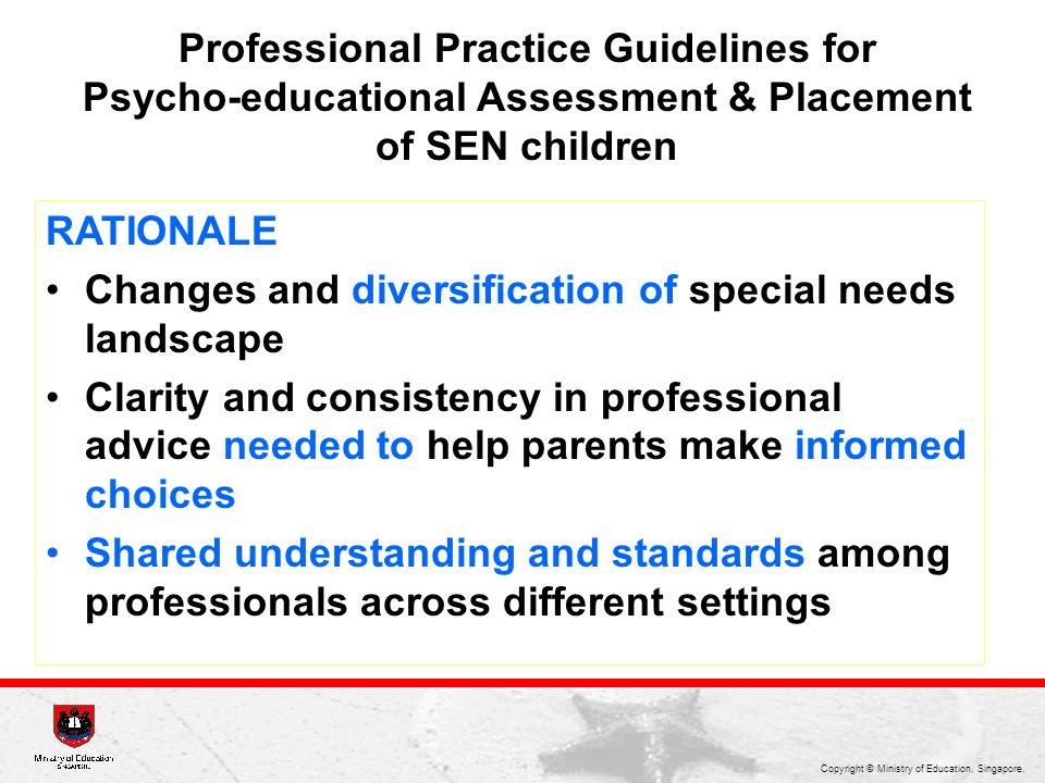 Professional Practice Guidelines for