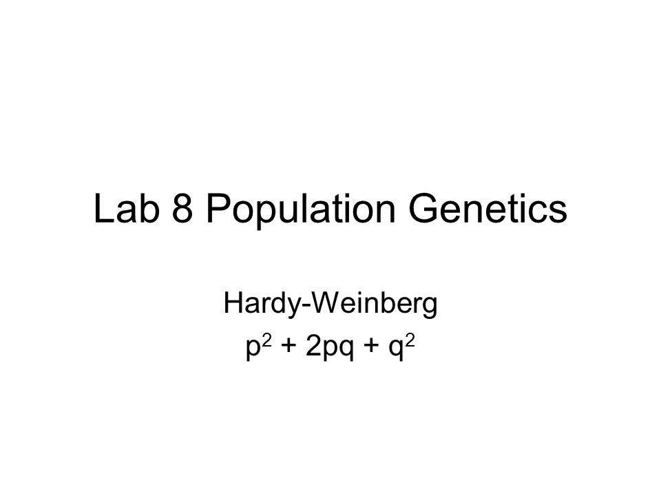 Lab 8 Population Genetics