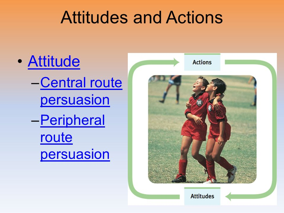 Attitudes and Actions Attitude Central route persuasion