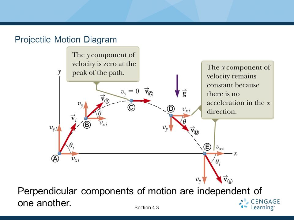 Projectile Motion Diagram
