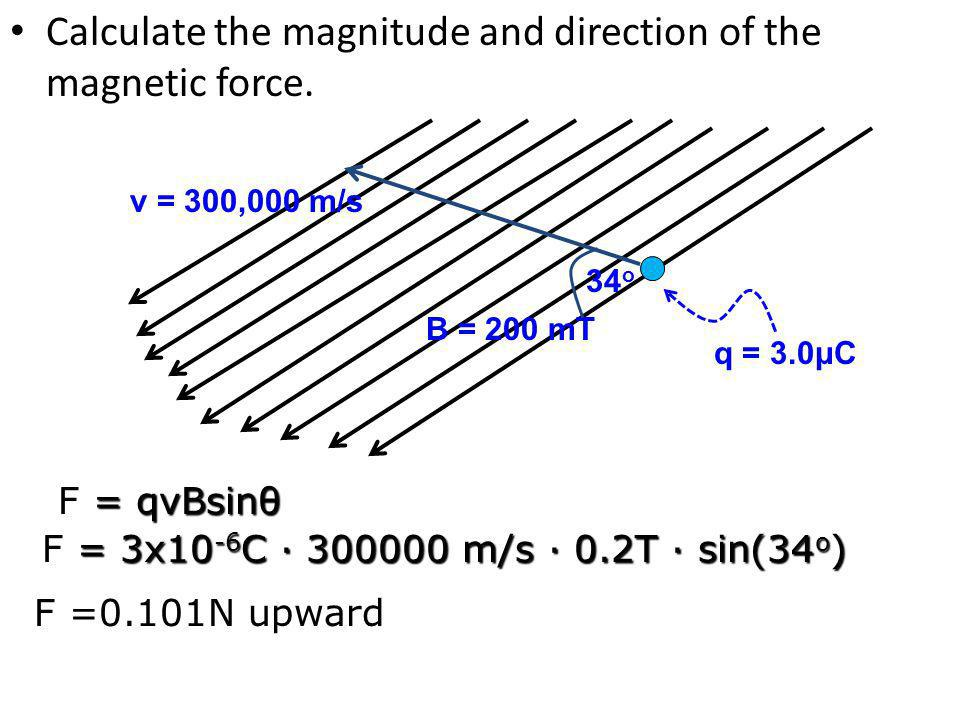 Calculate the magnitude and direction of the magnetic force.