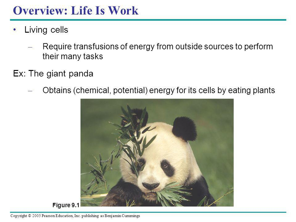 Overview: Life Is Work Living cells Ex: The giant panda