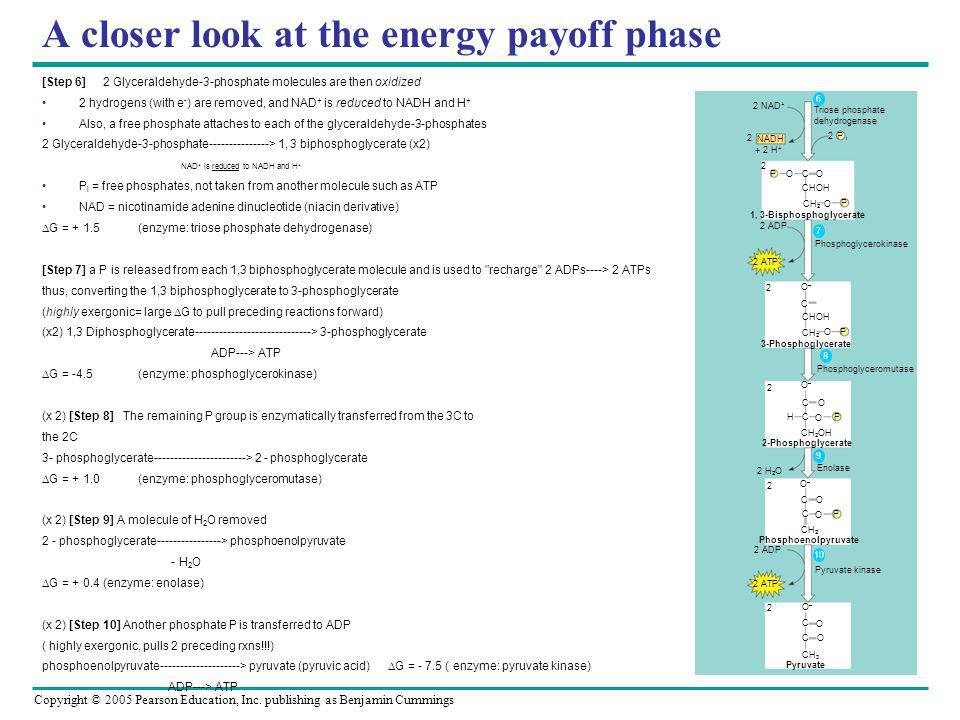 A closer look at the energy payoff phase
