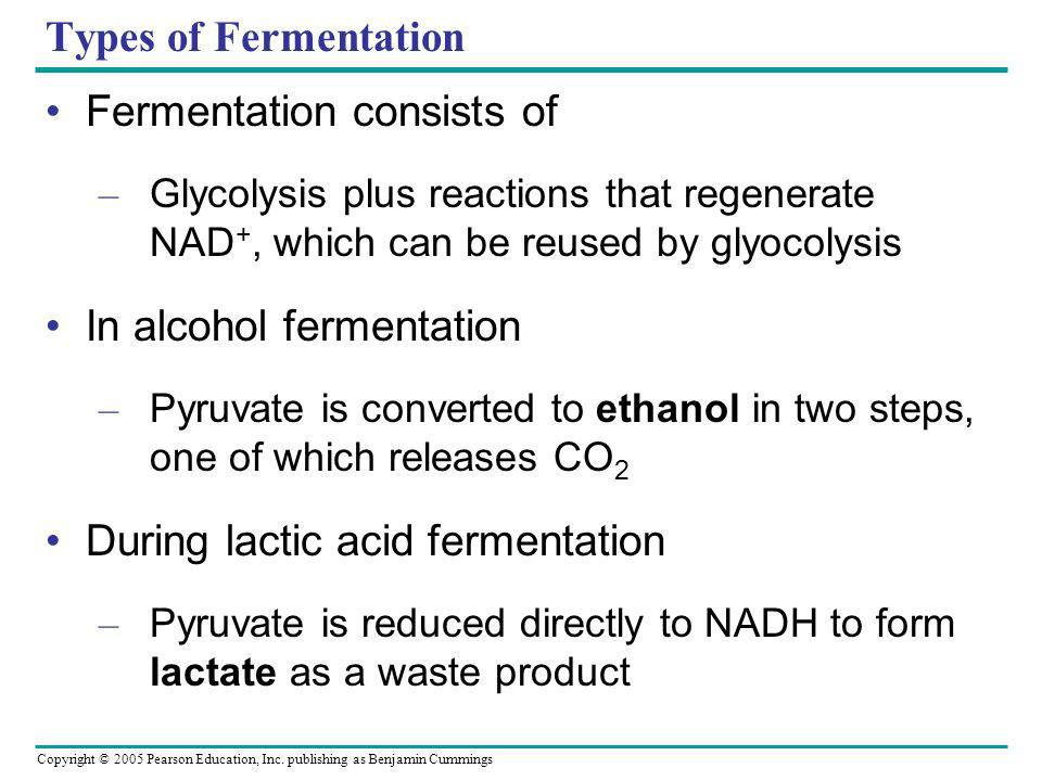 Fermentation consists of