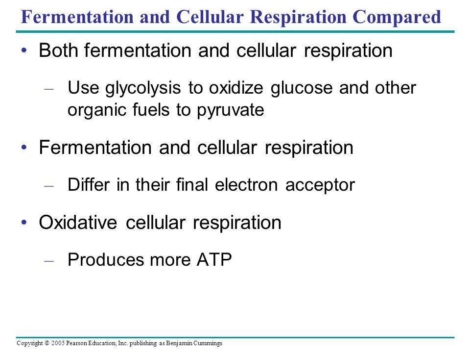 Fermentation and Cellular Respiration Compared