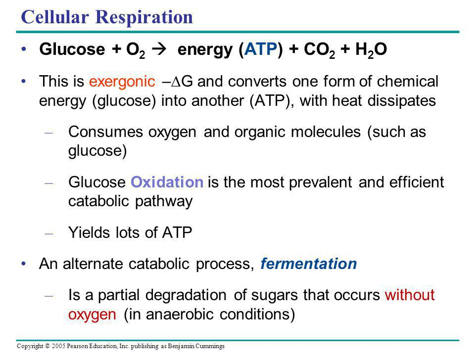 Cellular Respiration Glucose + O2  energy (ATP) + CO2 + H2O
