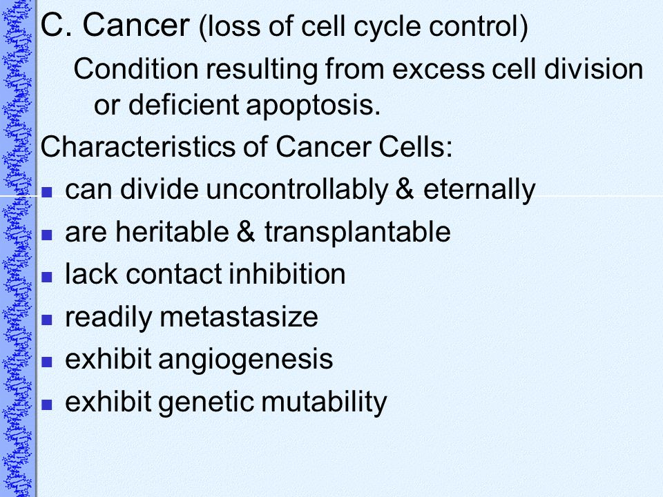 C. Cancer (loss of cell cycle control)