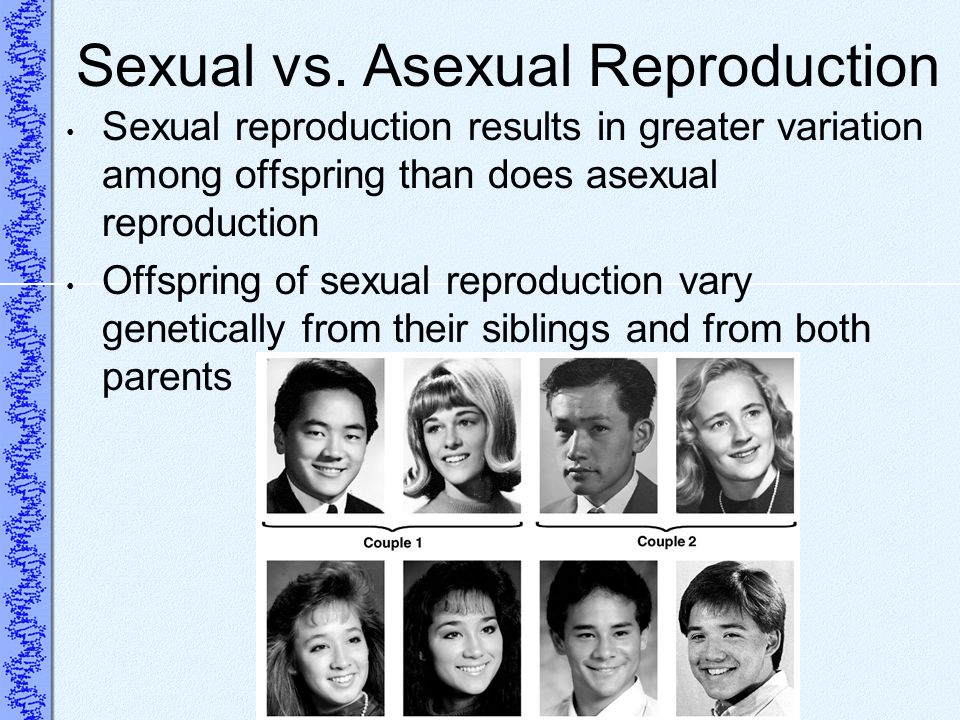 Sexual vs. Asexual Reproduction