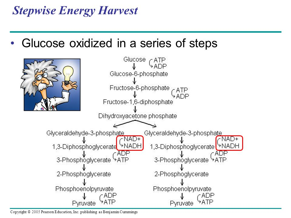 Stepwise Energy Harvest