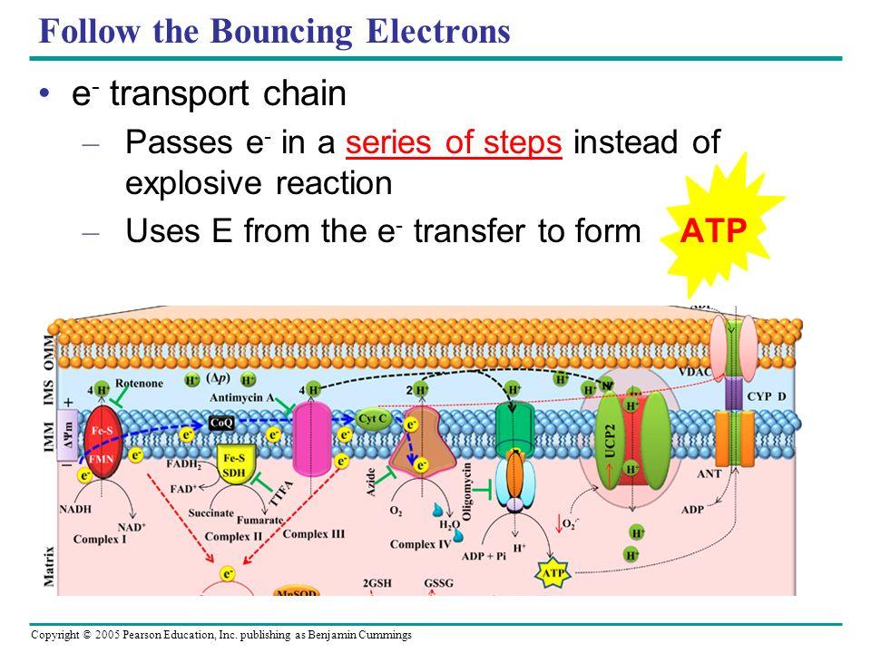 Follow the Bouncing Electrons