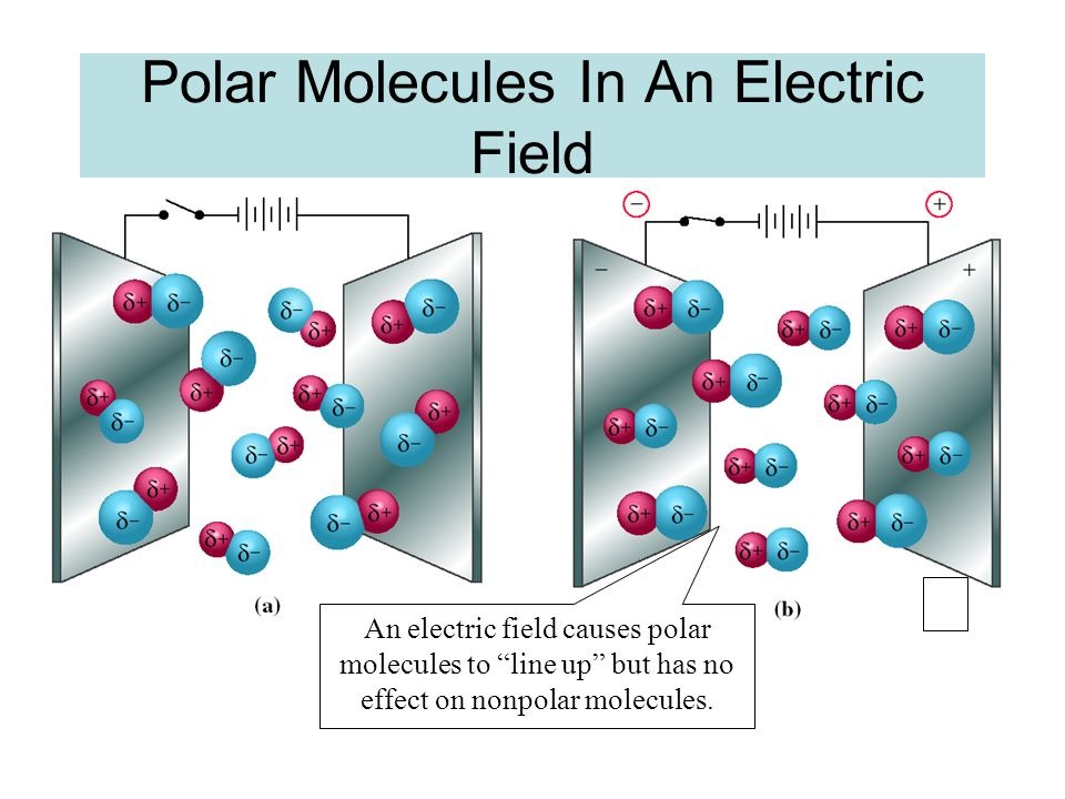 Polar Molecules In An Electric Field
