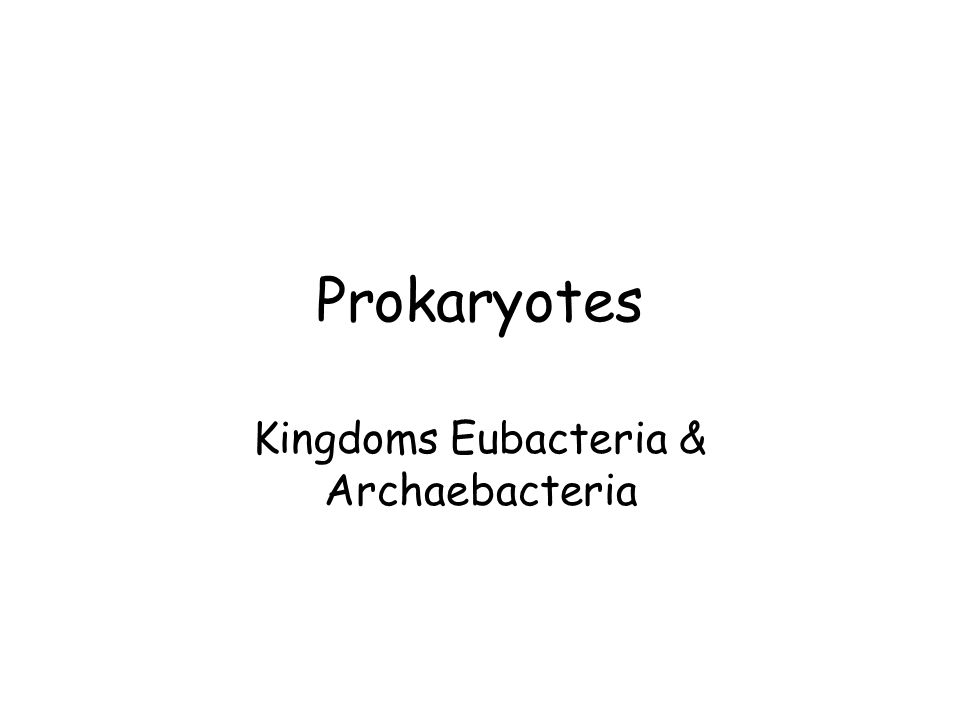 Kingdoms Eubacteria & Archaebacteria