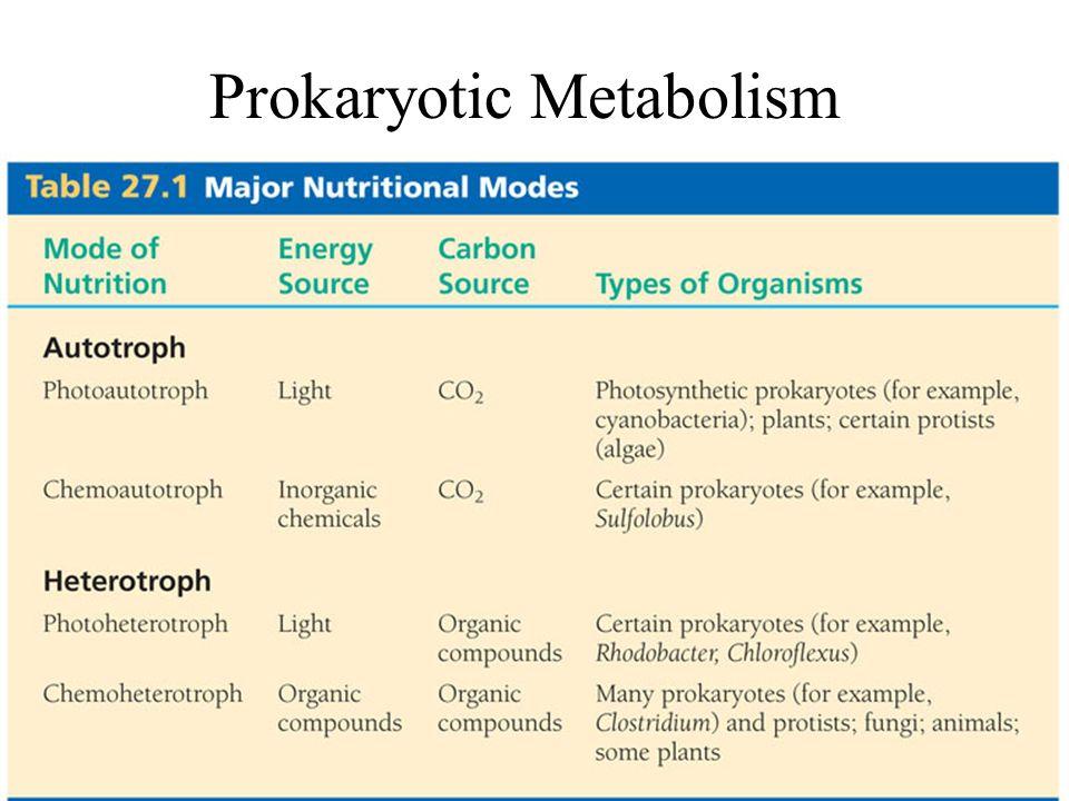 Prokaryotic Metabolism