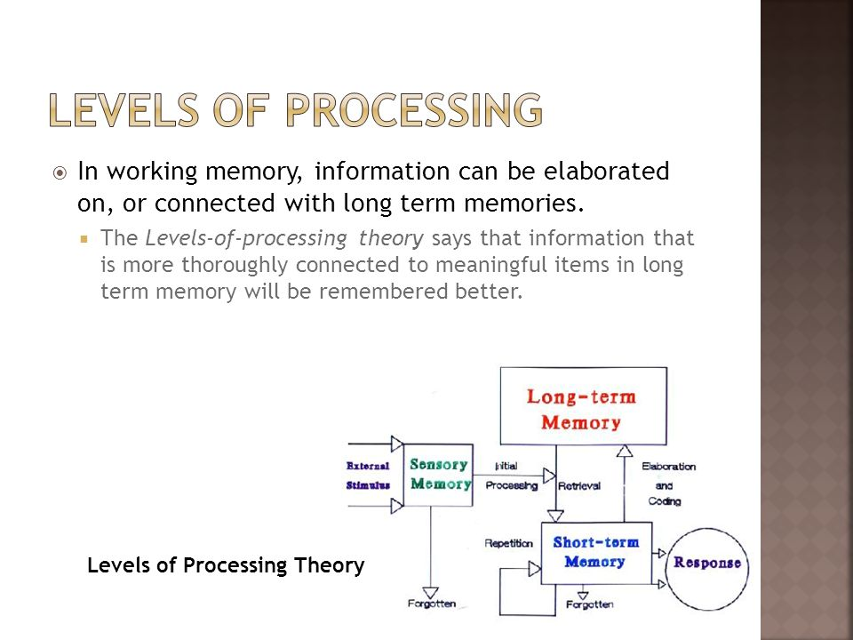 Levels of ProcessingIn working memory, information can be elaborated on, or connected with long term memories.