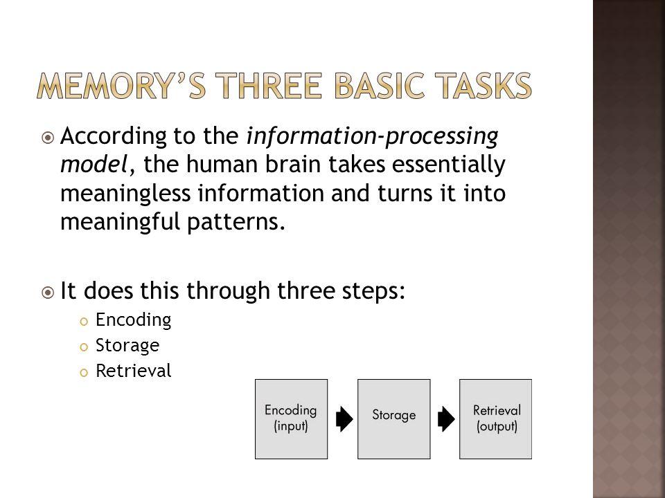 Memory's Three Basic Tasks
