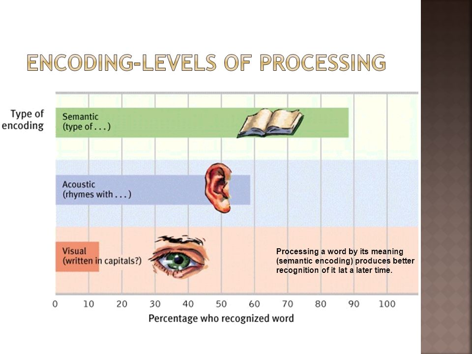 Encoding-Levels of Processing
