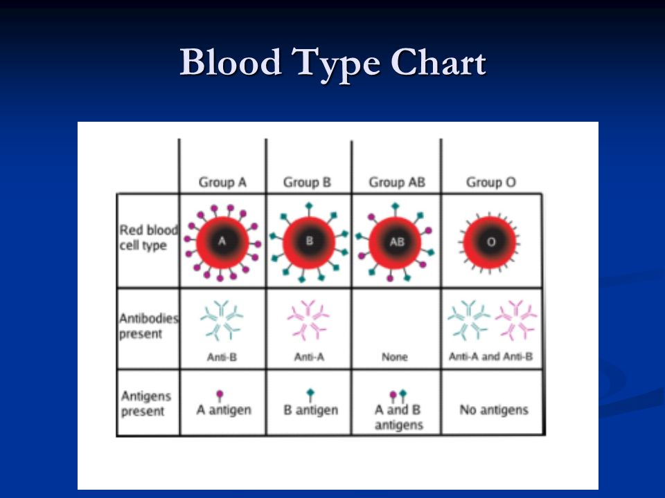 Blood Type Chart
