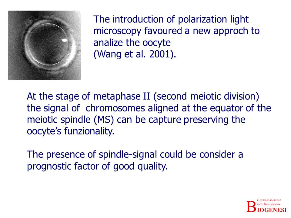 The introduction of polarization light microscopy favoured a new approch to analize the oocyte