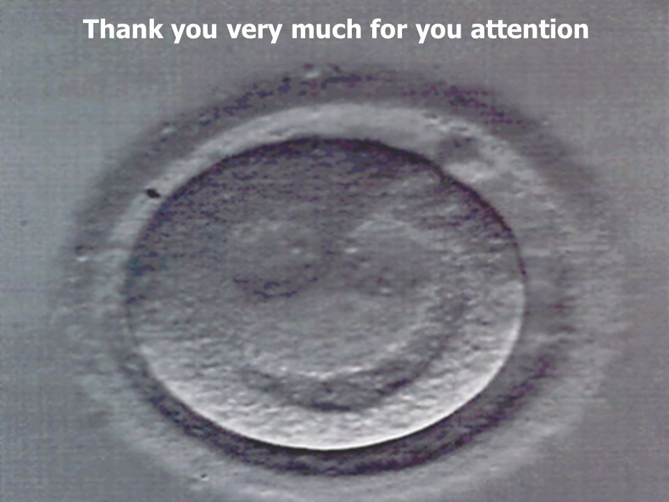 Thank you very much for you attention