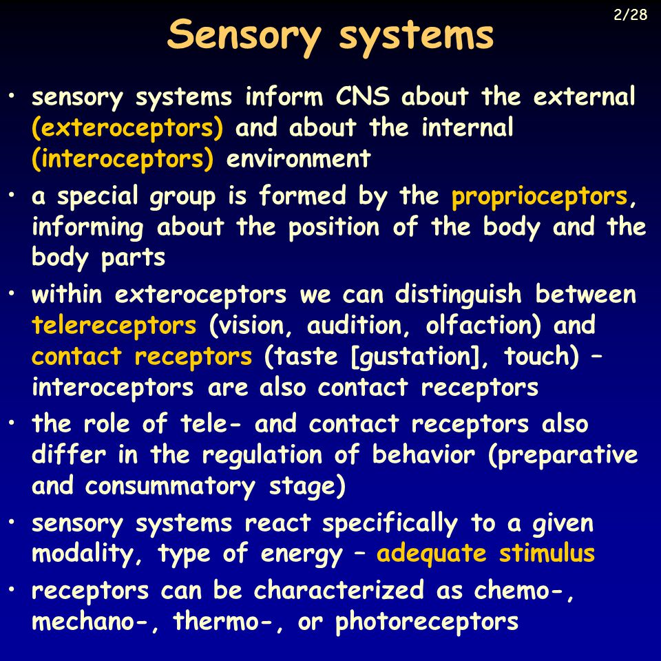 Sensory systems 2/28. sensory systems inform CNS about the external (exteroceptors) and about the internal (interoceptors) environment.