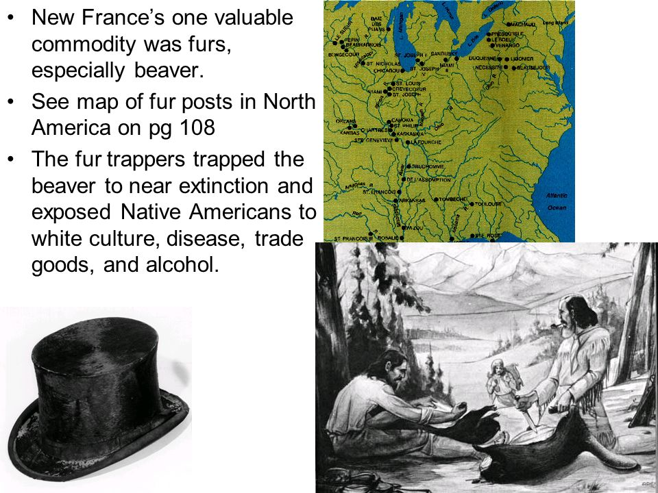 New France's one valuable commodity was furs, especially beaver.