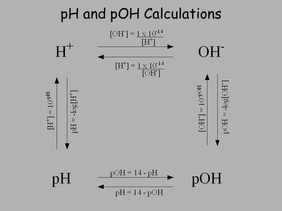 pH and pOH Calculations