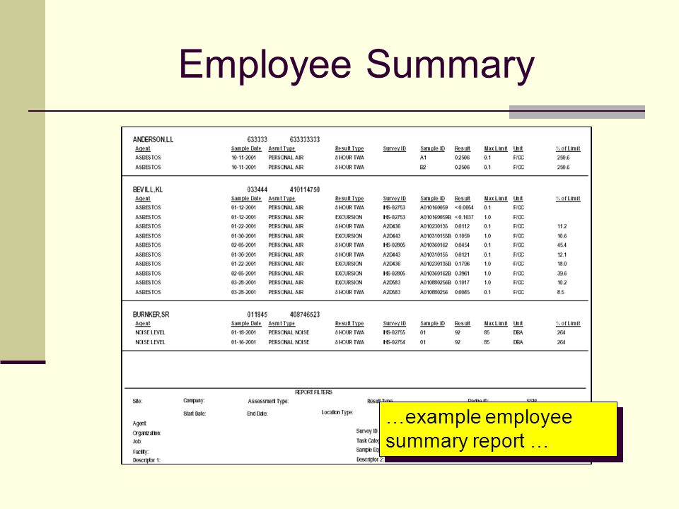 Employee Summary …example employee summary report …