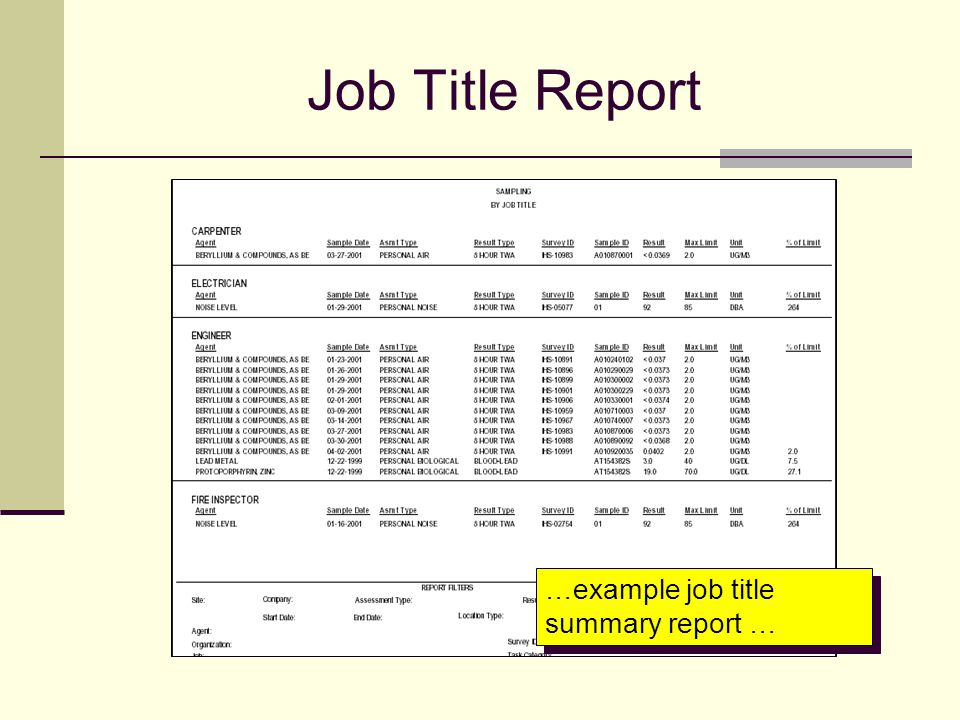 Job Title Report …example job title summary report …