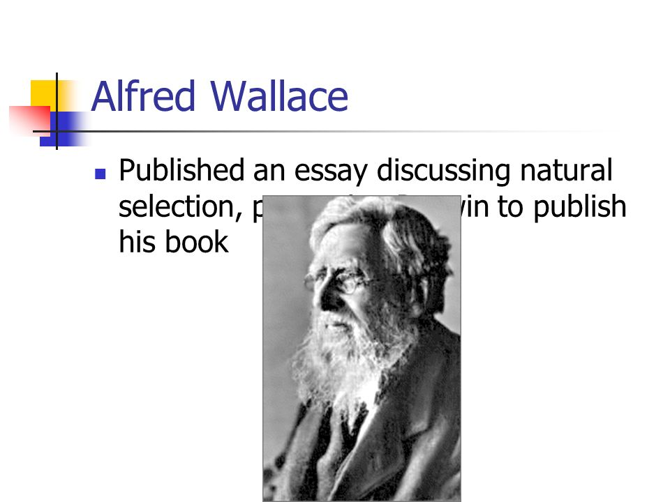 Alfred Wallace Published an essay discussing natural selection, prompting Darwin to publish his book.