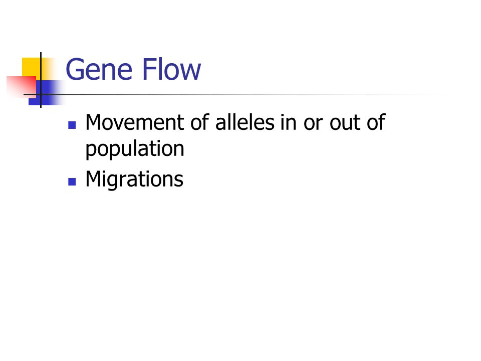 Gene Flow Movement of alleles in or out of population Migrations