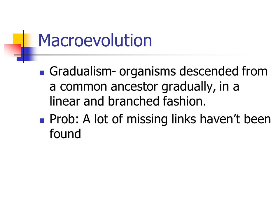 Macroevolution Gradualism- organisms descended from a common ancestor gradually, in a linear and branched fashion.