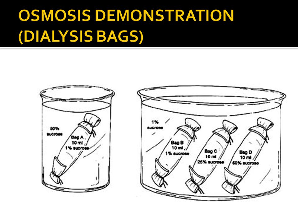 OSMOSIS DEMONSTRATION (DIALYSIS BAGS)