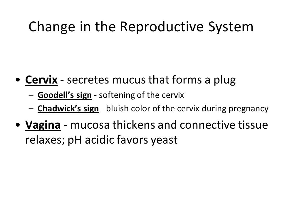 Change in the Reproductive System