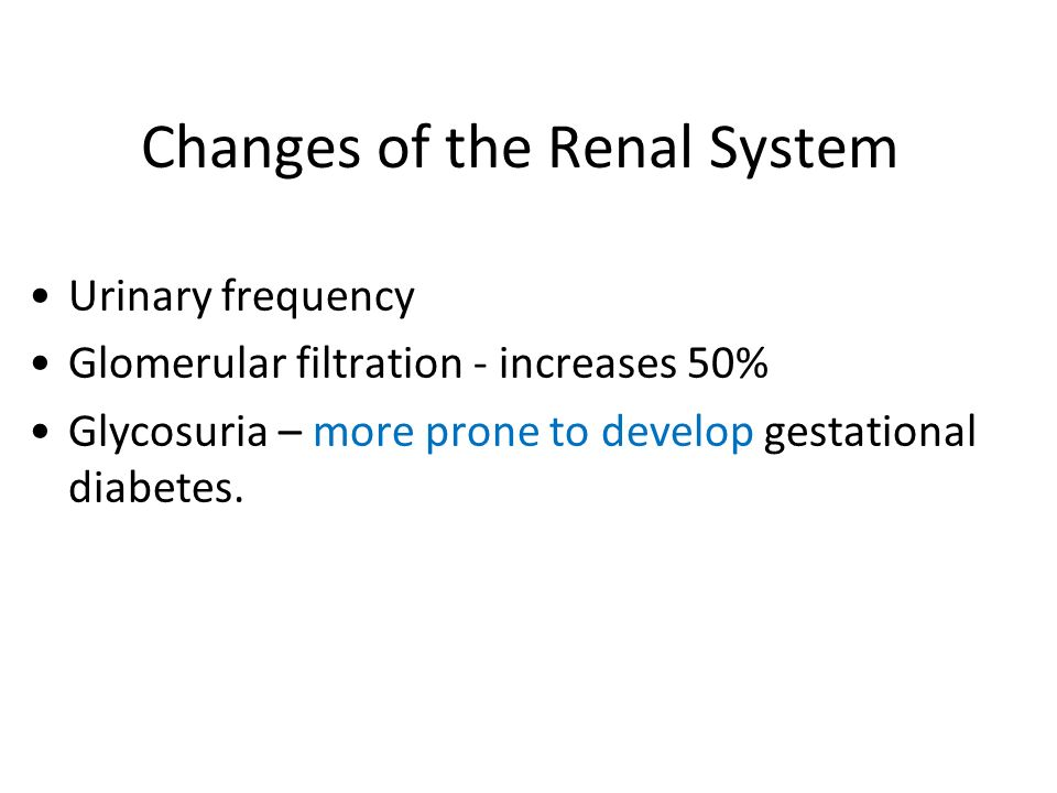 Changes of the Renal System