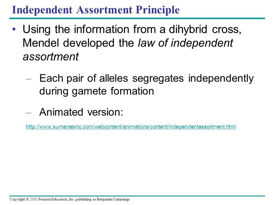 Independent Assortment Principle