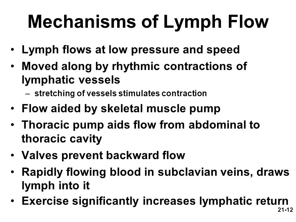 Mechanisms of Lymph Flow
