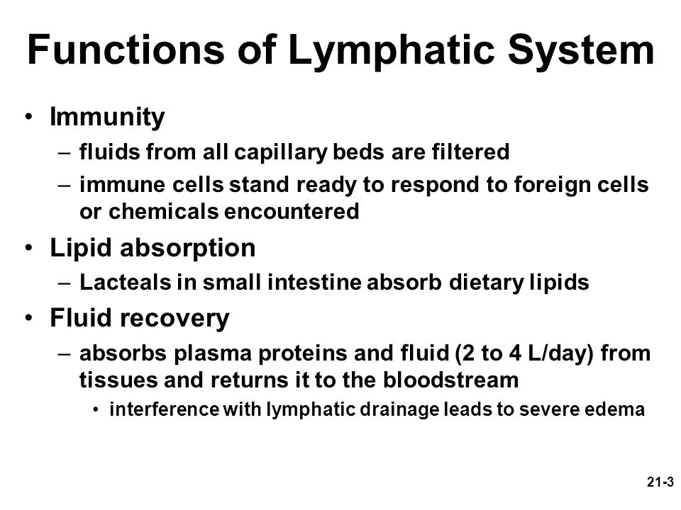 Functions of Lymphatic System