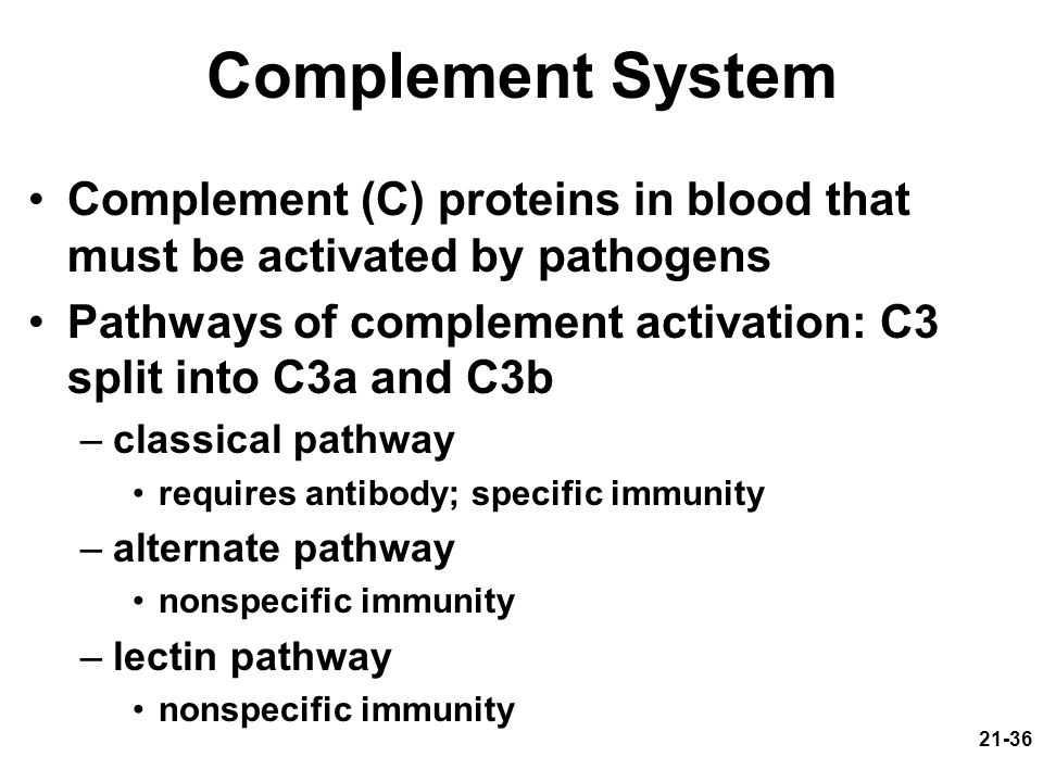 Complement System Complement (C) proteins in blood that must be activated by pathogens. Pathways of complement activation: C3 split into C3a and C3b.