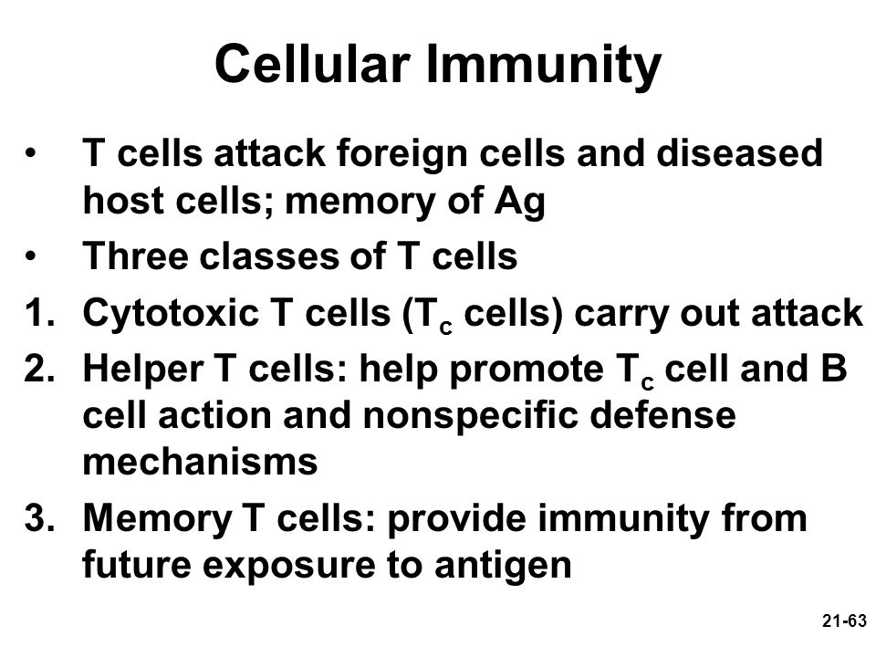 Cellular Immunity T cells attack foreign cells and diseased host cells; memory of Ag. Three classes of T cells.
