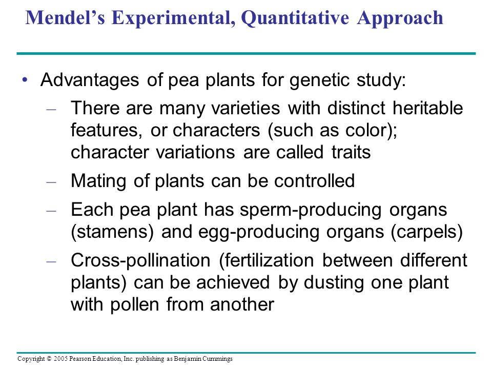 Mendel's Experimental, Quantitative Approach