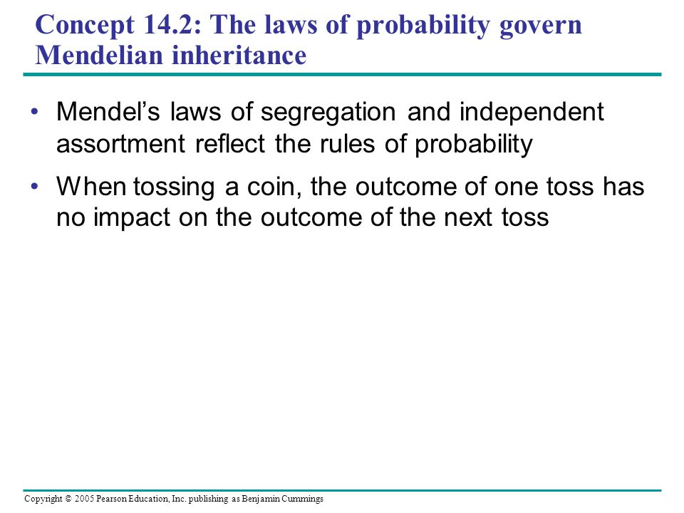 Concept 14.2: The laws of probability govern Mendelian inheritance