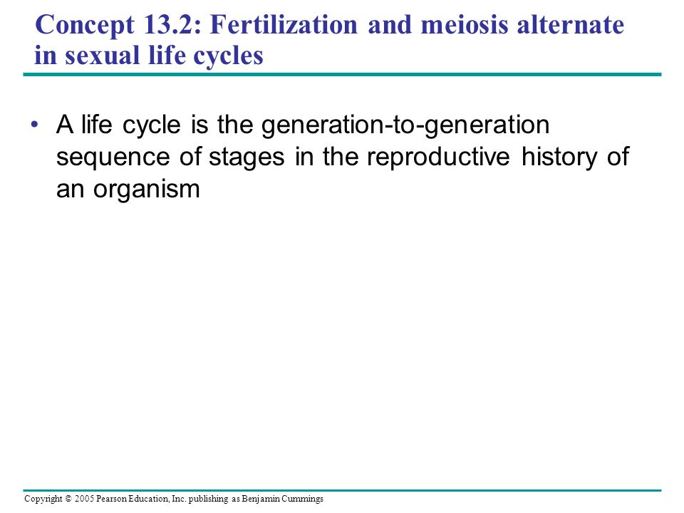 Concept 13.2: Fertilization and meiosis alternate in sexual life cycles