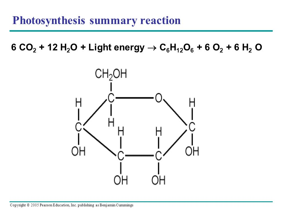 Photosynthesis summary reaction