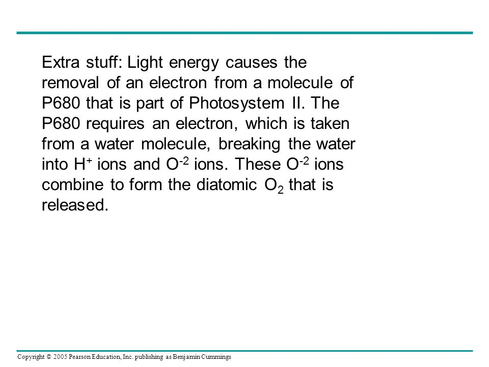 Extra stuff: Light energy causes the removal of an electron from a molecule of P680 that is part of Photosystem II.
