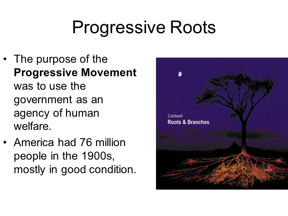 Progressive Roots The purpose of the Progressive Movement was to use the government as an agency of human welfare.